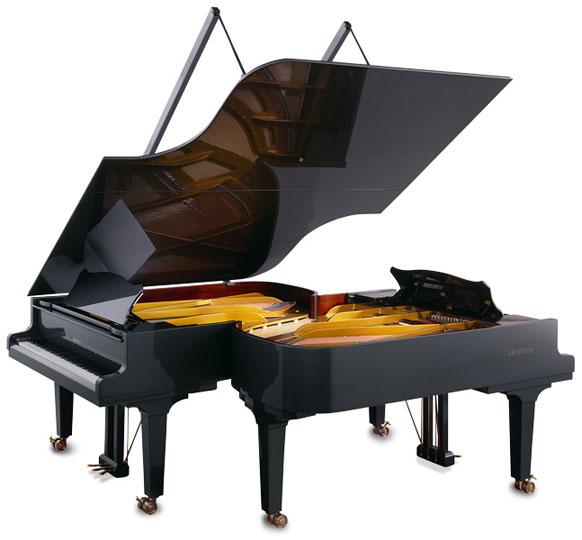 10 سازنده برتر پیانو، گروترین اشتاینوگ - Gortrian Steinweg
