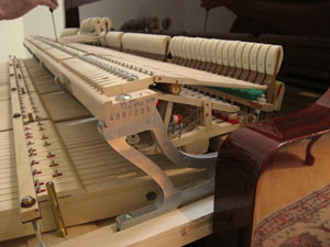 اکشن و بخش های مرتبط آن در یک گرند پیانو